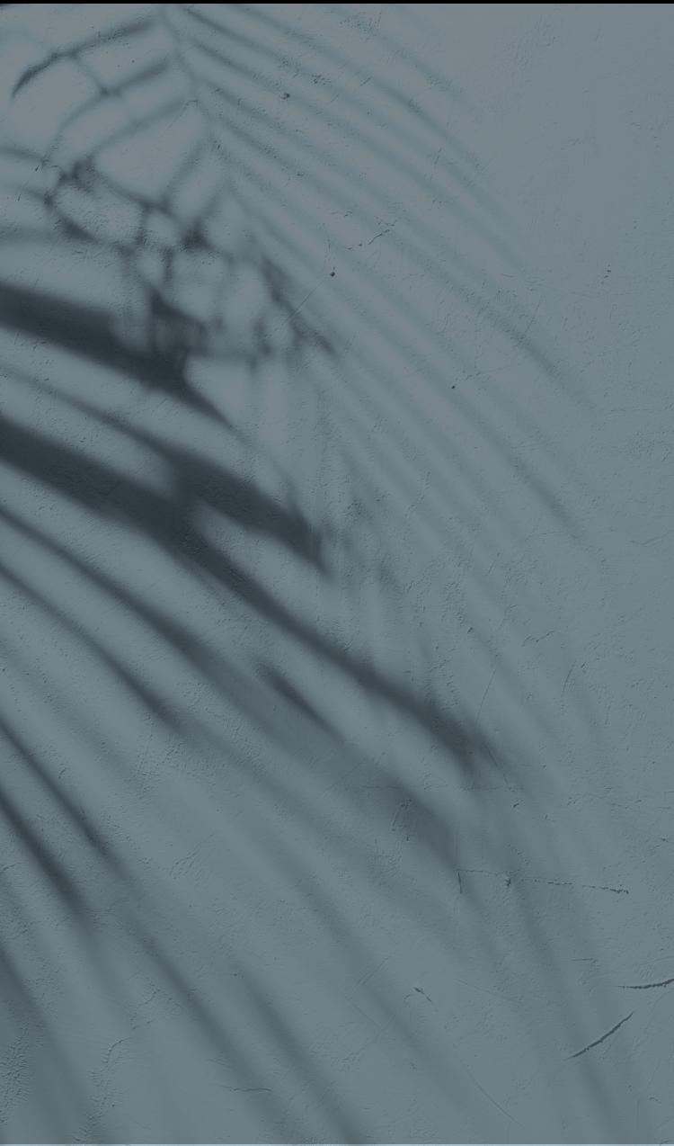 arrière-plan sombre avec des ombres de feuilles